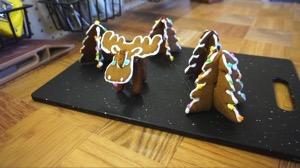 06 3dcookies